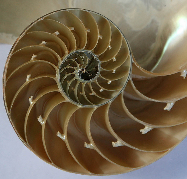 Proyecto Euler problema 2: números pares en la sucesión de Fibonacci